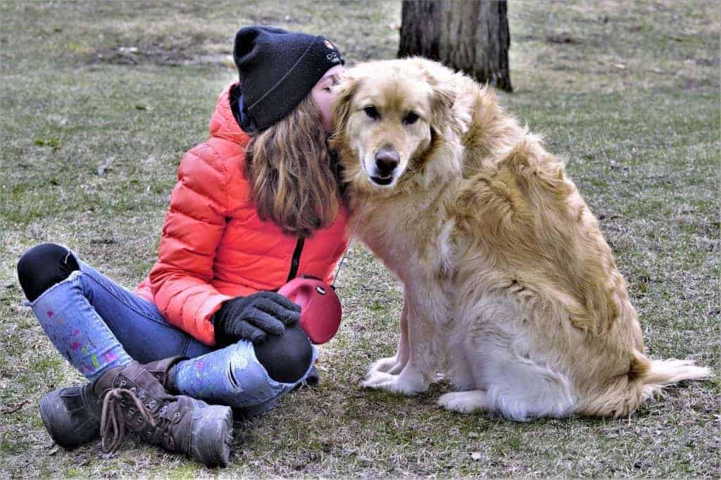 Best & affectionate Golden Retriever Female or male [ Find Out] |